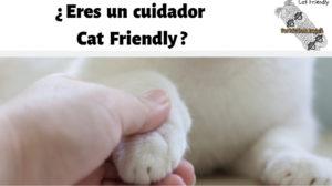 cuidador-cat-friendly