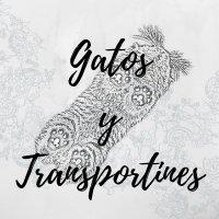 transporte y viajar con felinos